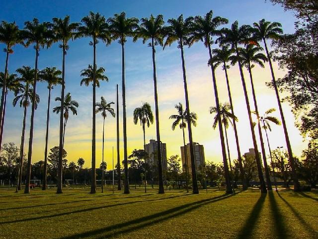 City's park