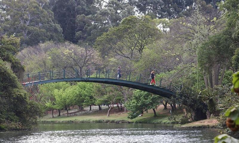 Capital Cities Tourism Ibirapuera Park Sao Paulo