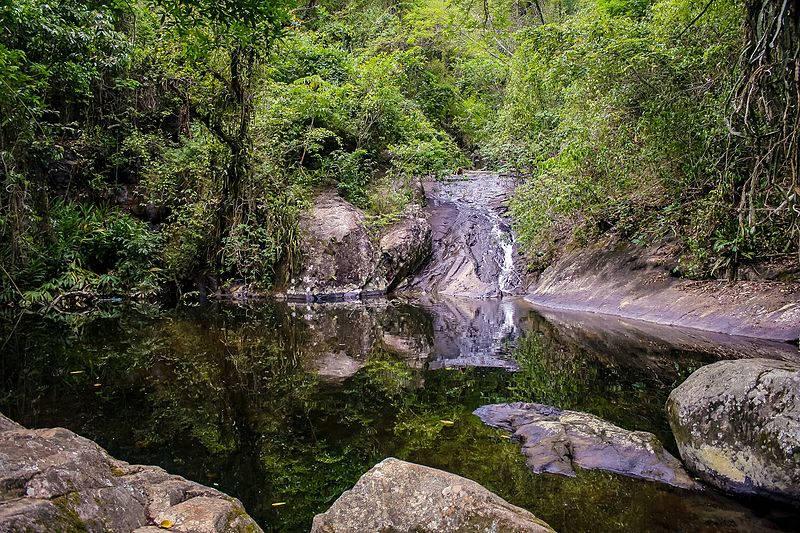 Cachoeira No Horto Rio De Janeiro