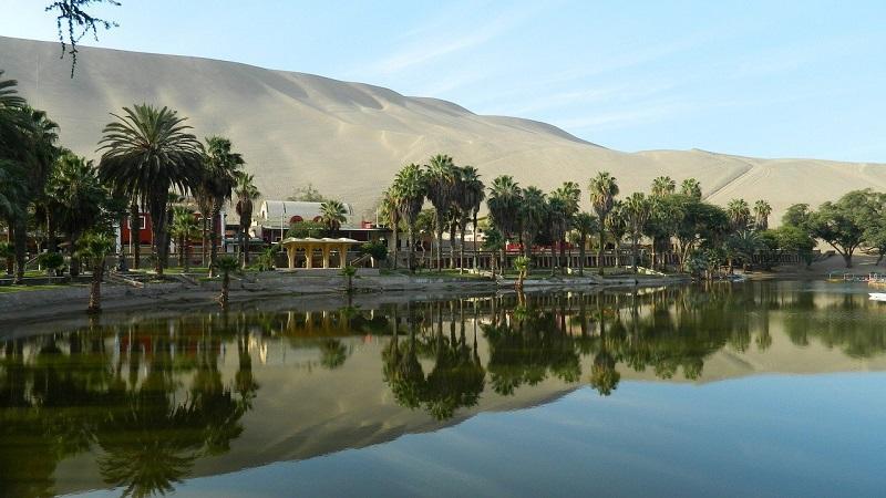 Oasis Huacachina Ica Peru