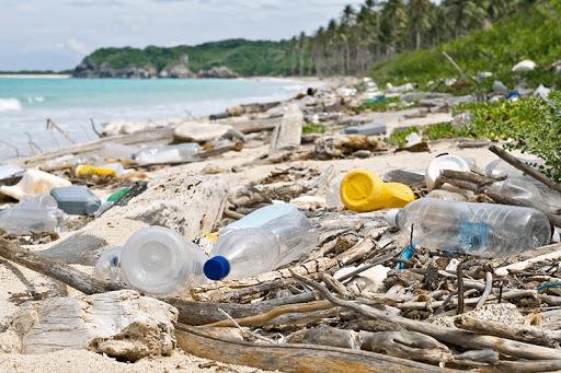 Plastic Tsunami