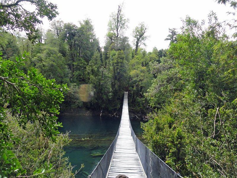 Puente Colgante Huilo Huilo