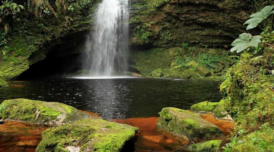 Parque Nacional De Los Guacharos