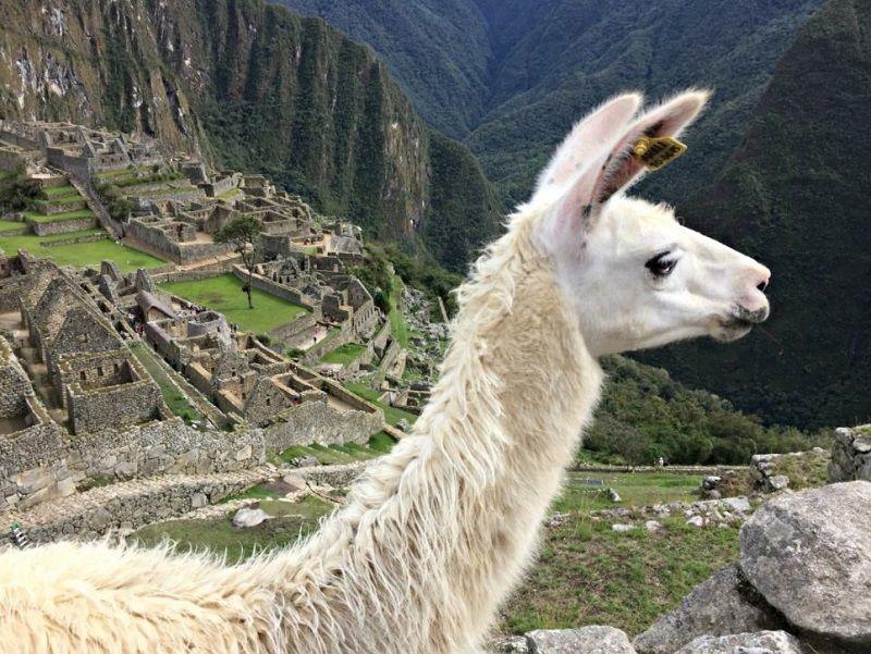 Valle Sur Peru
