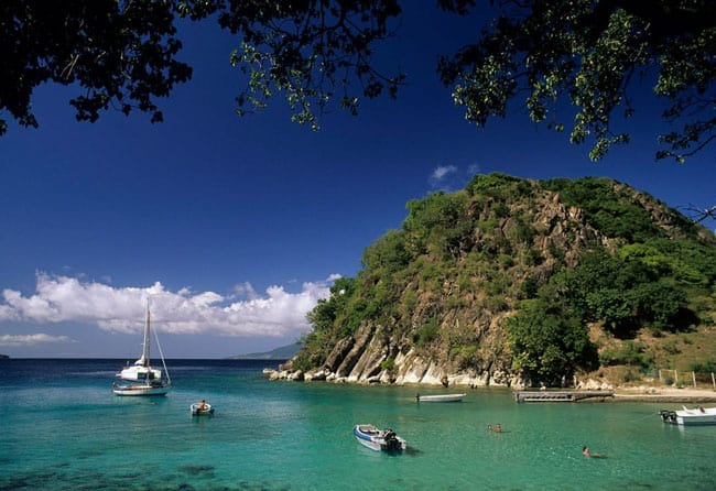 Ilha De Guadalupe